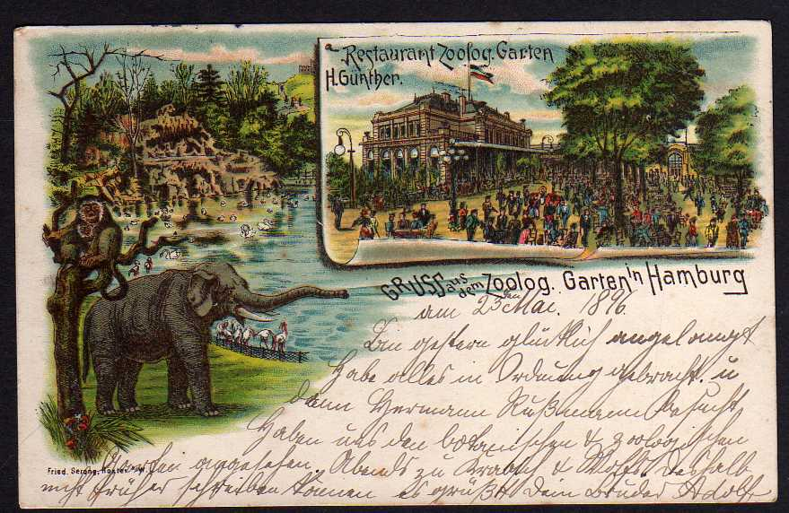 65128 Ak Hamburg 1896 Restaurant Zoologischer Garten Elefant Affen
